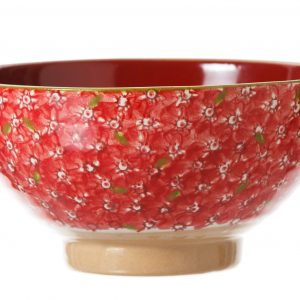 Nicholas Mosse Vegetable Bowl Lawn Red